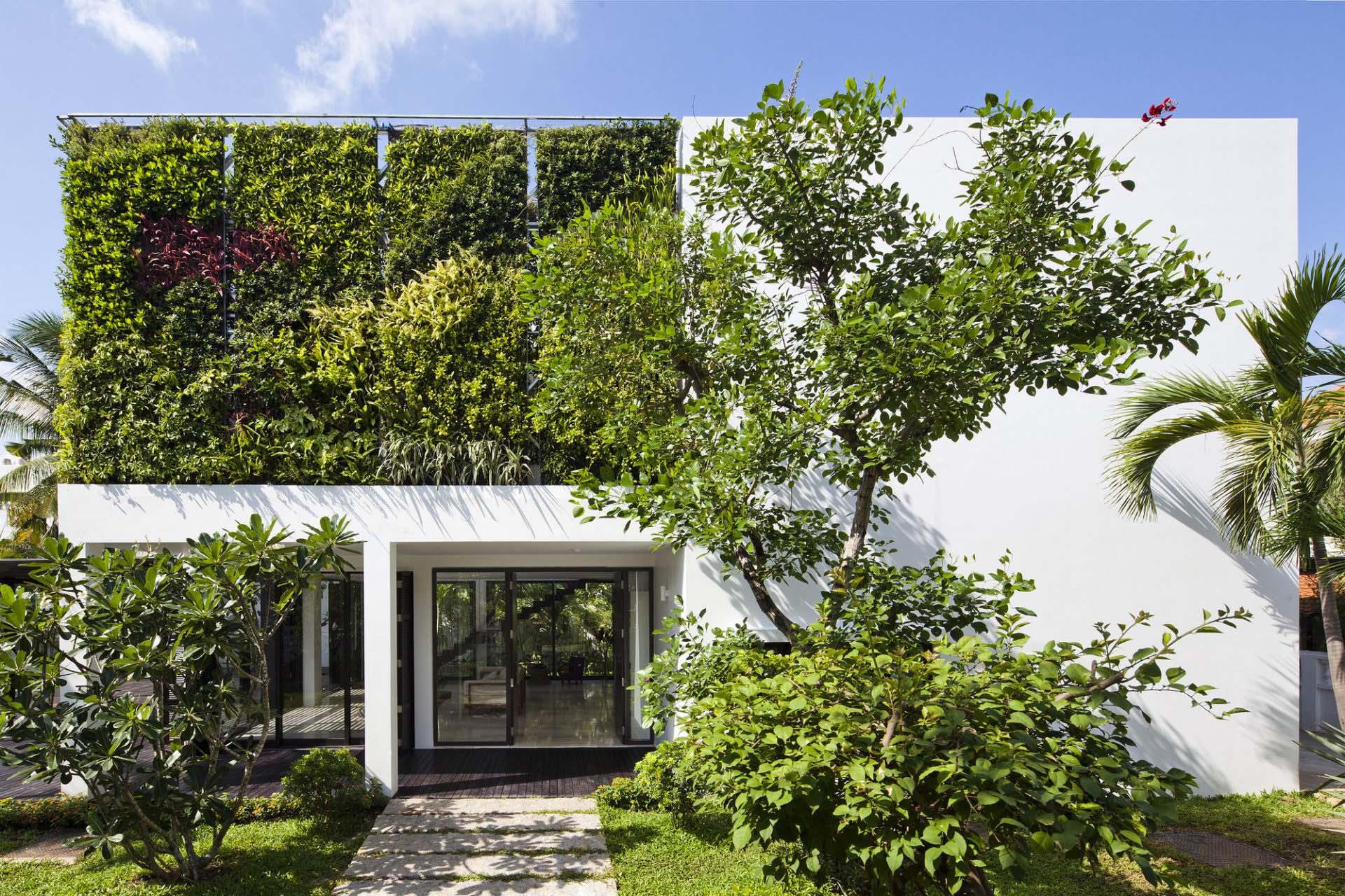 вертикальное озеленение в сочи